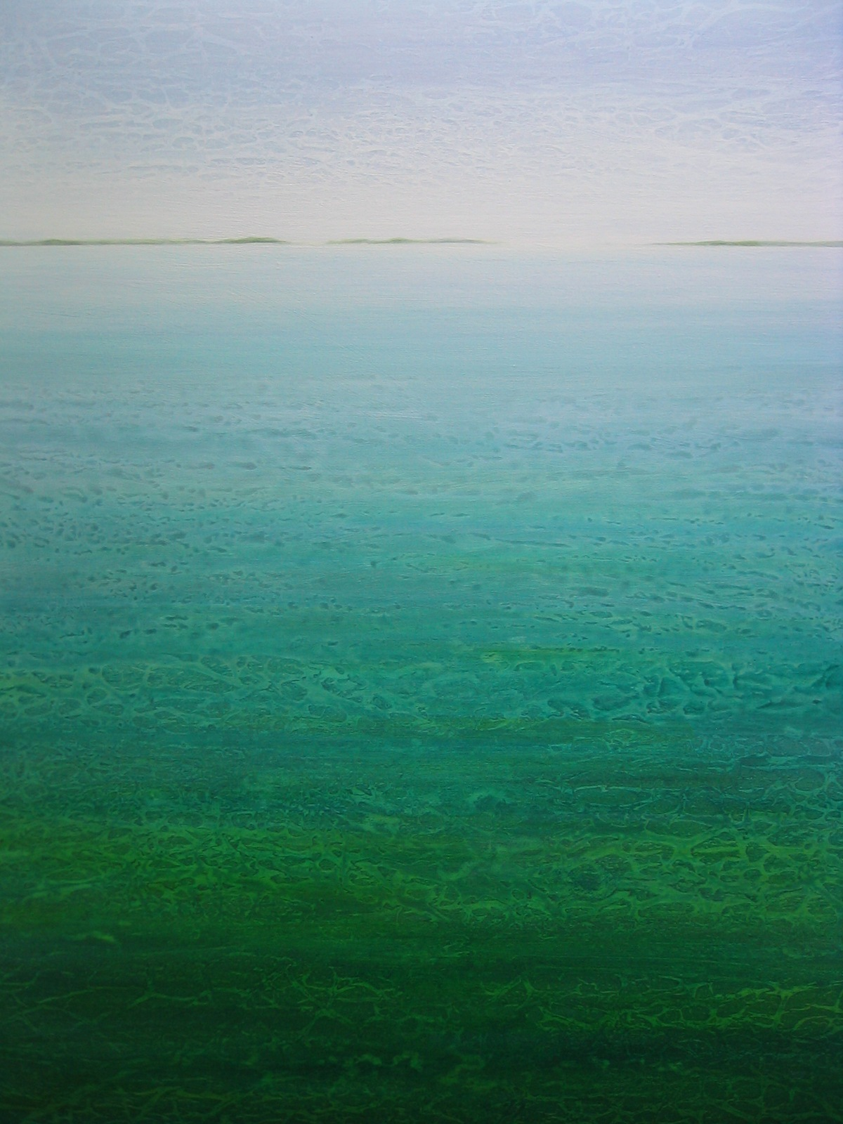 """Lagoon"" 48x36 inches, acrylic on canvas, ©2010 Maro Lorimer"